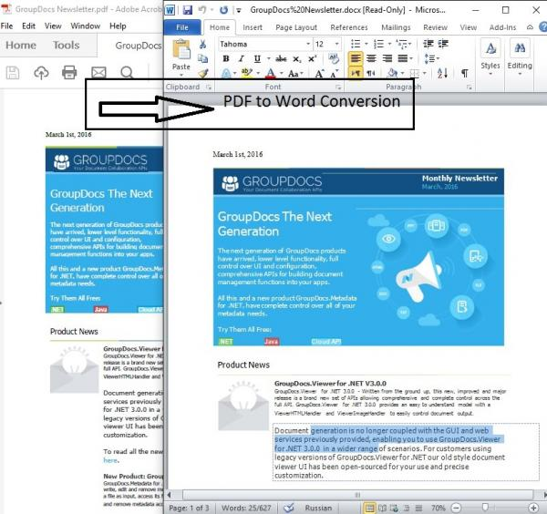 Name:  Pdf to Word Conversion.jpg